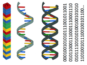 Graphic with DNA helix and binary data